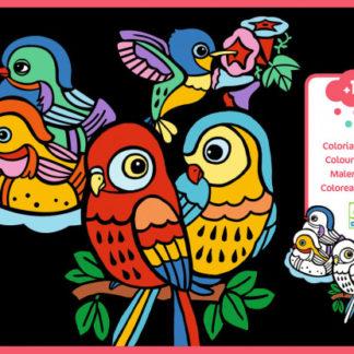 Sametové malování - Ptáčci