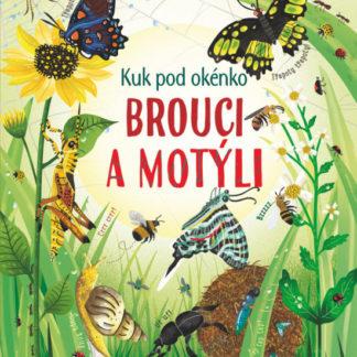 Kuk pod okénko - Brouci a motýli